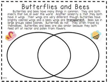 result for 2nd grade compare and contrast worksheets reading writing tutoring