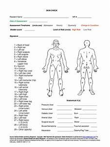 Body Check Form