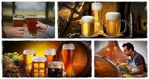 Beer Brewing Made Easy Review