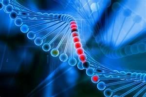 Method Predicts Exact Mutations Crispr Gene Editing Can