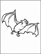 Coloring Bat Pages Animals Printable Bats Animal Bestcoloringpagesforkids Colouring Sheets Printables Dinosaur Activities Fun sketch template