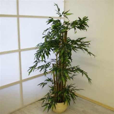 piante da arredo interno piante finte artificiali da arredo interno bamb 249 170 cm