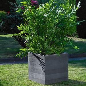 Plante Ombre Exterieur : pot design bo la boutique desjoyaux ~ Carolinahurricanesstore.com Idées de Décoration