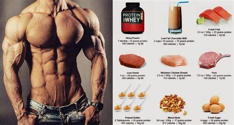 protein     body fitness