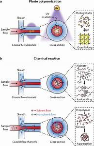Solidification Methods For Fiber Generation  Schematic
