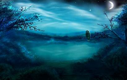 Night Scenery Forest Lake