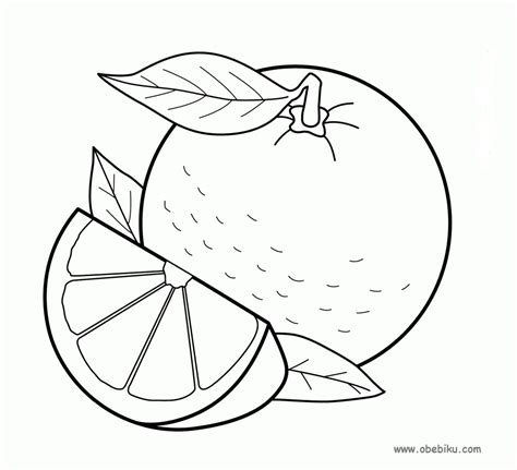 gambar buah jeruk untuk mewarnai