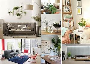 Decorating with houseplants for Interior decorating houseplants