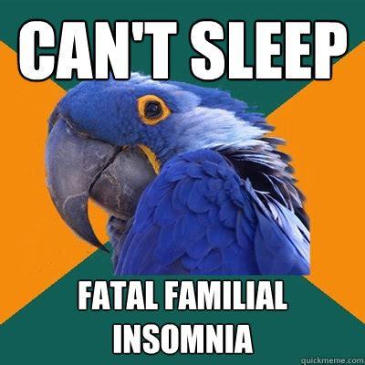 Insomnia Memes - can t sleep fatal familial insomnia paranoid parrot quickmeme