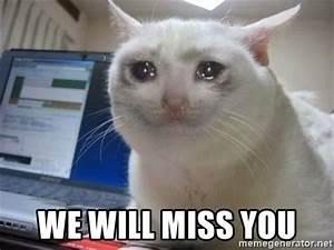 We Will Miss You : we will miss you crying cat meme generator ~ Orissabook.com Haus und Dekorationen