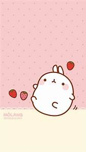 17 best images about molang on donuts