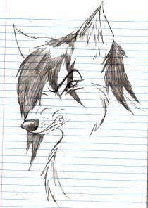 Angry Anime Wolf Drawings