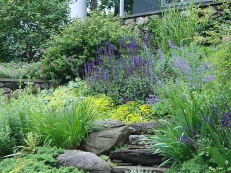 landscaping steep slopes steep slope landscape planting eclectic landscape boston by vdhdesign
