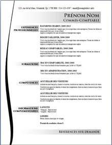 resume model doc modele cv doc gratuit cv anonyme