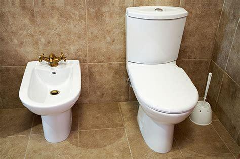 Fancy Toilet Bidet by World S Best Toilet Seat And Electronic Bidet