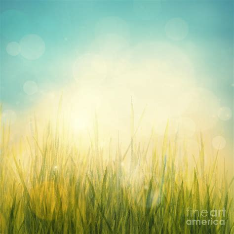 Spring Summer Abstract Season Nature Background Digital