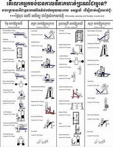 Beginner U0026 39 S Bodybuilding Program