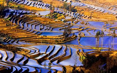 Yunnan China Agriculture Nature Landscapes Wallpapers Wide