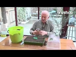 Quand Semer Les Tomates : semer les tomates cerises au chaud youtube ~ Melissatoandfro.com Idées de Décoration