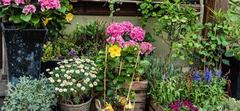 Pilze Im Garten Bodenbeschaffenheit by Die Grundregeln So Schaffst Du Es In 10 Schritten Zum