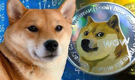 Shiba Inu coin: Analyst warns new doge-token won't beat ...