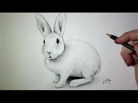 full download comment dessiner un lapin facilement