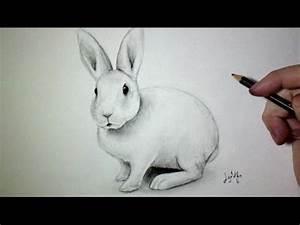 Lapin Facile A Dessiner : comment dessiner un lapin tutoriel youtube ~ Carolinahurricanesstore.com Idées de Décoration