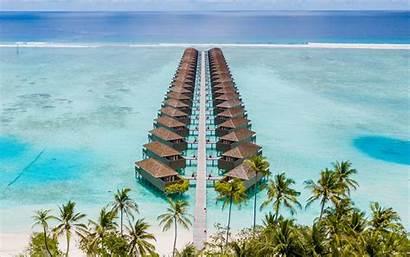 Beach Structure Palm Rest Widescreen Background