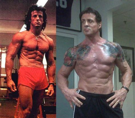 stallone sylvester body shape still he movies above many lift separate continued seen keep different quotes rocky rambo years expendables