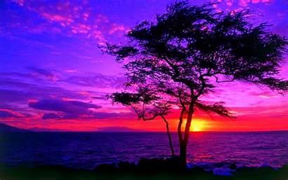 Sunset Wallpapers Desktop Sun Downloads Wallpapertag Lavender