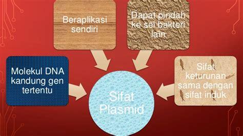 Kandungan Dalam Urine Wanita Hamil Bioteknologi Joshua Smp Kristen Petra Jombang