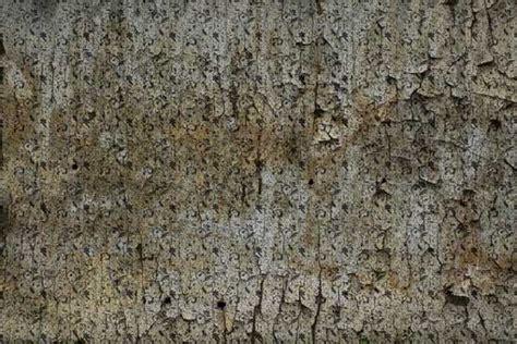 Shadowhouse Creations: Grunge Wall Texture Set
