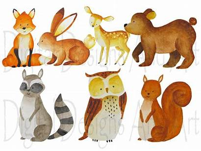 Woodland Animals Forest Watercolor Animal Clipart Illustration