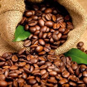 From the moment coffee beans come out of the roaster, they begin to lose flavor. Coffee Bean Fragrance Oil - Fragrance Shed
