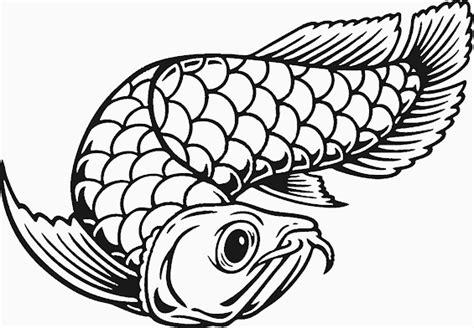 gambar mewarnai ikan arwana untuk anak