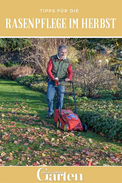 Rasenpflege Im Herbst Vertikutieren by Tipps F 252 R Die Rasenpflege Im Herbst Zierg 228 Rten