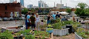 28 Urban Farming Projects That Are Changing the World