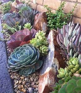 1000 idees a propos de plantes de rocaille sur pinterest With superb amenager un jardin en pente 0 1001 idees et conseils pour amenager une rocaille fleurie