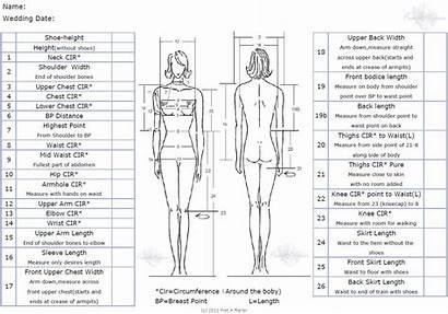 Measurements Measurement Chart Sewing Taking Guide Dresses