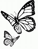 Butterfly Cartoon Coloring Drawing Clipart Library Popular Clip Dark sketch template