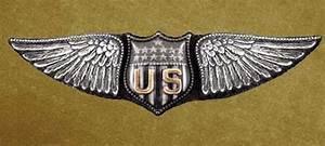 Civilian Astronaut Wings Emblem (page 2) - Pics about space