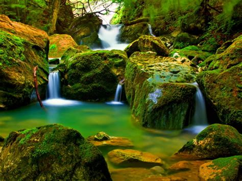 forest falls waterfalls nature background wallpapers