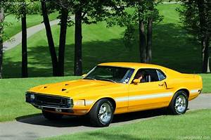1969 Shelby Mustang GT 350 Image. Photo 7 of 30