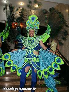 Déguisement Carnaval Original : id es de d guisements et costumes pour le carnaval de rio ~ Melissatoandfro.com Idées de Décoration
