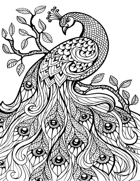 45 pretty coloring pages all pretty flower colouring