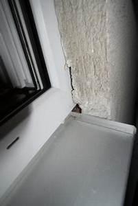 Schimmel Silikon Fenster : schimmel fenster silikon gefhrlich awesome altes silikon mit und anderen with schimmel fenster ~ Eleganceandgraceweddings.com Haus und Dekorationen
