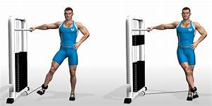 Cable Hip Adduction • Bodybuilding Wizard