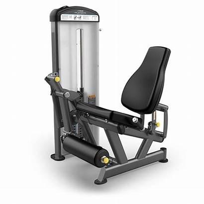 Gym Equipment Fuse Fitness True Xl Strength