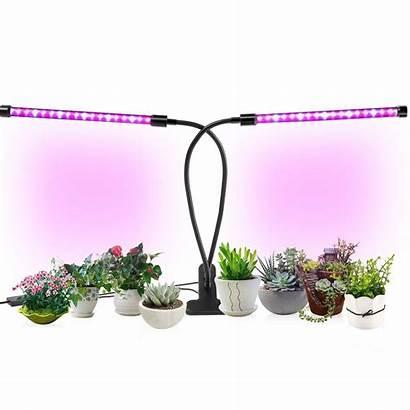 Grow Lights Led Indoor Lamp 12h Timer