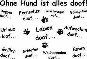 Alles Ist Doof : hunde ohne hund ist alles doof wandtattoo 1 0 tierisch tolle geschenke ~ Eleganceandgraceweddings.com Haus und Dekorationen